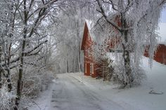 Country road, would sooo love to see this in my area!  Yes, one of the few who loves snow!  lol!