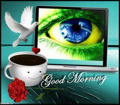 Good Morning BRASIL