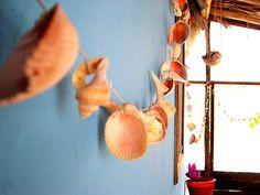 shell garlands  #sea #ocean #beach #seashell