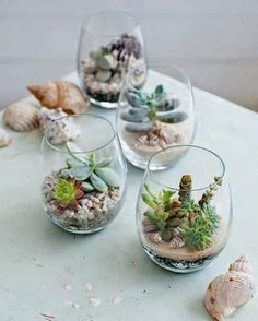 Terrariums are a fun project  to create. All you need is an interesting glass  container with or without a lid, some pebbles or gravel, 1-5 petite plants or succulents, moss or sand and potting soil.