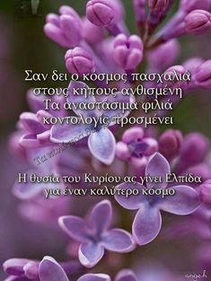 Greek Easter, Greek Quotes, Wish, Wallpaper, Photos, Happy Easter, Wallpaper Desktop, Pictures, Photographs