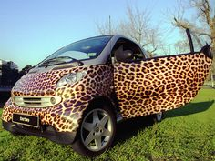 Do you have a favorite animal? Wrap your vehicle in its spots or fur. Why not?! It's a great conversation starter.