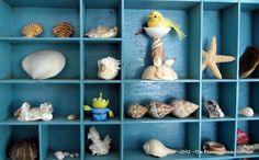 Seashells in painted print boxes from The Essential Beachcomber