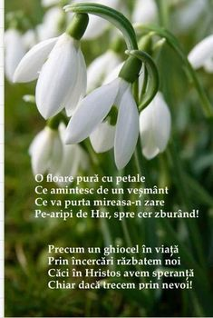 8 Martie, Hello Spring, Spirituality, Faith, Merry, Easter, Diy, Biblia, Pictures
