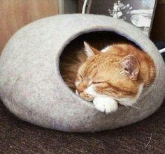 Keçe Kedi Evi Felt Cat House