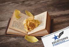 Un #libro no solo es un nuevo mundo, un conservador de letras. También se convierte en la tumba más hermosas de las flores, conservando entre sus páginas la delicadeza de las rosas gracias a los susurros de las historias que se esconden en cada hoja.