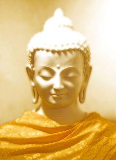 Brown .. . #buddha #dhammapada
