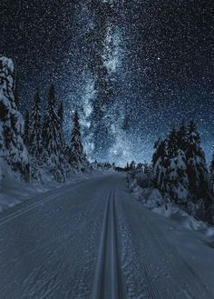 Winter Night Skies...