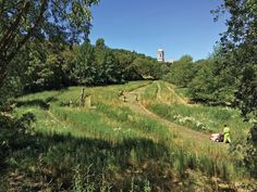 #spaziapertivegetali The Can Colomer meadow during its periodic mowing and maintenance. Marti Franch.