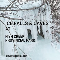 Did you know Fish Creek Provincial Park has ice falls and caves? Less than a kilometre from the Bow Valley… Fish Creek Park, Canada Destinations, Old Wagons, Hiking With Kids, Parks Canada, Hill Park, Go Outdoors, Cross Country Skiing, Winter Fun
