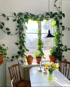 🤍🌿🍃Living with plants🍃🌿🤍 . Indoor Green Plants, Ivy Plant Indoor, Potted Plants, Home Sweet Home Images, Decoration Plante, Plant Design, Cozy Living, House Rooms, Plant Decor