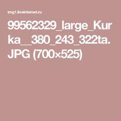 99562329_large_Kurka__380_243_322ta.JPG (700×525)