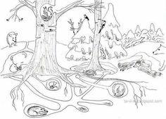 Kindergarten Themes, Kids Art Class, Science Activities For Kids, Animal Habitats, Winter Crafts For Kids, Abstract Nature, Art Programs, Winter Art, Science And Nature