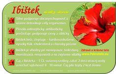 Info Ibištek Raw Food Recipes, Healthy Recipes, Korn, Food Art, Natural Health, Diabetes, Life Is Good, Ale, Herbs