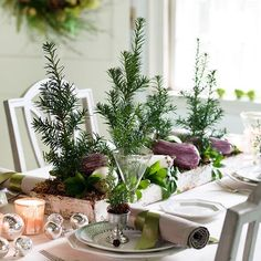Isn't this Yew Holiday Centerpiece beautiful? See more like it here: http://www.bhg.com/christmas/indoor-decorating/simple-christmas-centerpieces/