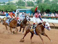One Dashing Eagle, 2012 All American Futurity. Running Horses, Quarter Horses, Eagle, Pets, Diamond, American, Animals, Animaux, Animales