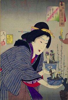 Tsukioka Yoshitoshi, Thirty-two Aspects of Women, Undecided : Habits of a proprietress of the Kaei era examining potted Japanese pheasant-eye plants, good luck charms when bought just before the lunar New Year. Samurai, Arte Latina, Hokusai, Art Asiatique, Bonsai Art, Art Japonais, Japanese Painting, Japanese Prints, Japan Art
