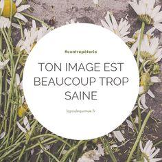 🐔 Ton image est beaucoup trop saine #contrepèterie #lapoulequimue image Solution, Decorative Plates, Images, Healthy, Humor
