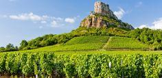 La Bourgogne é una regione famosa per i suoi vini, ecco che ora é possibile grazie alla nuova applicazione conoscere la storia dei suoi vigneti.