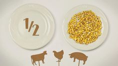 Michael Pollan's Food Rules: A stop-motion film by Marija Jacimovic and Benoit Detalle. Vote for it here: http://www.thersa.org/film-competition  (via Brainpickings)