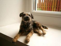 blue & tan border terrier