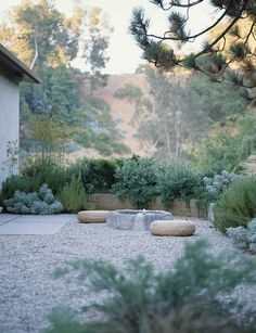 gravel courtyard, low maintenance garden, mix of green planting, low stone water feature, by Elysian Landscapes