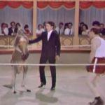 El+día+que+Woody+Allen+boxeó+con+un+canguro+(VIDEO)