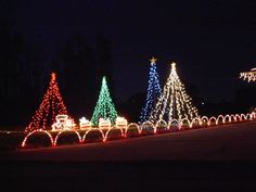 Land O Lights - My Christmas Light Display in Land O Lakes, FL - Simple and Fast Pole Trees