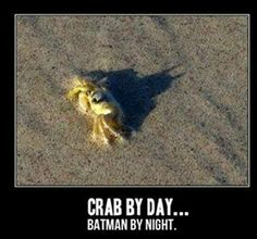 Batcrab