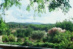 Nature lover? Get in touch with the ecological side of #Ibiza #mothernature