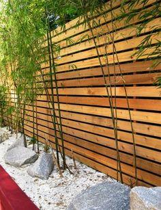 stone bamboo garden asian green concept