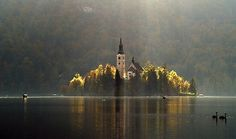 light from above on lake bled, slovenia- --stane crnjak Castles To Visit, Beautiful Places, Beautiful Pictures, Round Tower, Lake Bled, The Secret Book, Formal Gardens, Old Stone, Places To Go