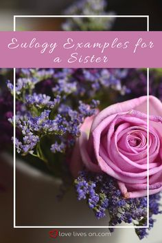Read some beautiful eulogy examples for a sister from our list of best eulogy examples to help spark some inspiration for writing a eulogy for your beloved sister. All Flowers Images, Eulogy Examples, Writing A Eulogy, Calming Activities, Gift Wrapping Supplies, Organic Gardening, Gardening Tips, For Your Party, Amazing Flowers