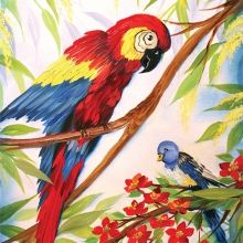 wOil Project Packets : wOil Parrot Project Packet