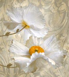 112 Best White Flower Paintings Images Flower Art Flower