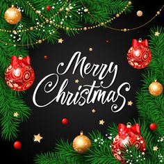 Merry christmas calligraphy with baubles... | Free Vector #Freepik #freevector #background #brochure #flyer #poster Christmas Pictures Free, Merry Christmas Photos, Merry Christmas Wishes, Very Merry Christmas, Christmas Greetings, Christmas 2019, Christmas Bulbs, Christmas Gifts, Christmas Jesus