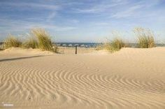 Rent a apartment playa moncayo in Guardamar del Segura, Costa ...