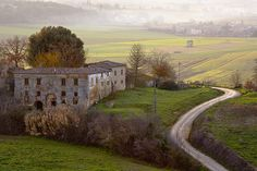 vite passate by Giuseppe Moscato, via Flickr
