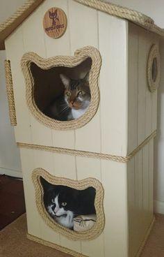 Double trouble  Tristan & Fernando loving their #catcottage #cattower  #handmade #bespoke #catfurniture