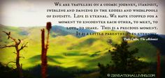 We are travelers on a cosmic journey, stardust, swirling and dancing in the eddies and whirlpools of infinity. Life is eternal. We have stopped for a moment to encounter each other, to meet, to love, to share. This is a precious moment. It is a little parenthesis in eternity.