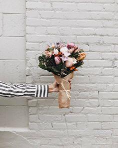 saturday blooms