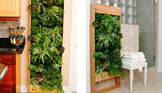 Elevated Landscape Technologies (ELT) indoor living wall installations