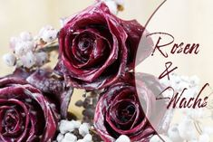 It is almost unbelievable, but old candles can be used to make fresh roses wonderful and look fantas How To Make Rose, Old Candles, Embroidered Towels, Most Beautiful Gardens, Wedding News, Wedding Napkins, Diy Garden Decor, Candle Making, Pin Collection