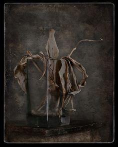 Zbigniew Reszka, Dead Tulips- tattoo inspiration