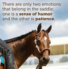 So true! Especially when you ride Mules! Equine Quotes, Equestrian Quotes, Equestrian Problems, Rodeo Quotes, Horses And Dogs, Show Horses, Pretty Horses, Beautiful Horses, Inspirational Horse Quotes