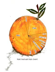 "Notes Toward An ""Optimal Peat Diet"" Health Chart, Diet Chart, Hypothyroidism Diet, Thyroid Diet, Thyroid Health, Healthy Foods To Eat, Healthy Fats, Healthy Eating, Pancreatic Diet Recipes"