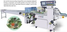 #VegetableWrappingMachine is suitable for the compact packing of general leaf type vegetables and has packing speed of over 35 bags per/min with excellent performance. it allow for the plaement of soft leaf type vegetable directly on to the flat film surface which then automatically forms the bag around the product eliminating the need for manual packing