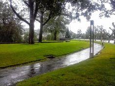 Boa tarde :D Quase um espelho curvo no jardim junto à Ponte Nova de Arcos de #Valdevez na tarde de hoje - http://ift.tt/1MZR1pw -