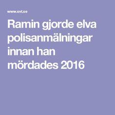 Ramin gjorde elva polisanmälningar innan han mördades 2016