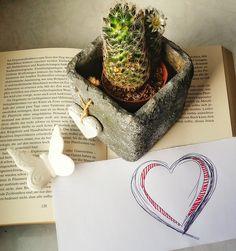 Ein Buch nur lesen kann ja jeder. Aber eines zu lieben, das will gelernt sein. Anders als einen Menschen zu lieben ist das eigentlich gar nicht. Es hat sogar ein paar Vorteile ;-) Zum Valentinstag zeige ich sie euch auf meinem Buchblog :-)